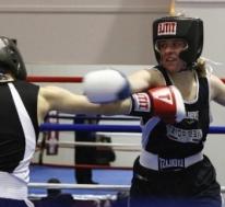 Amateur Boxing vs. Live Boxing
