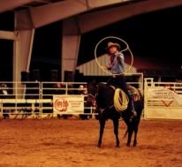 Broncs & Bulls