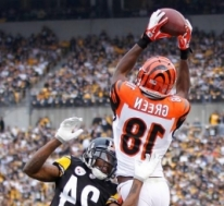 Cincinnati Bengals vs. Cleveland Browns