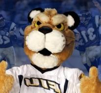 Florida International Golden Panthers vs. North Carolina Charlotte 49ers