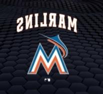 Miami Marlins vs. Chicago Cubs