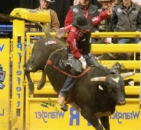 Cheyenne Frontier Days: PRCA Rodeo Finals